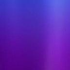 Iris Purple (1)